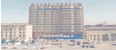哈尔滨锅炉厂有限责任公司